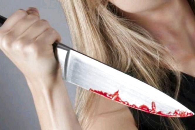 У Хорошівському районі жінка з ножем напала на сусіда через конфлікт щодо випасу коня