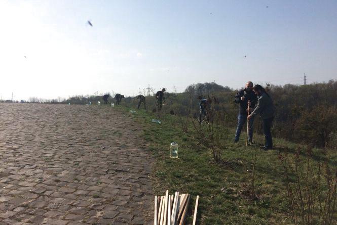 Біля Монументу Вічної Слави житомирянивисадили 25 дубів
