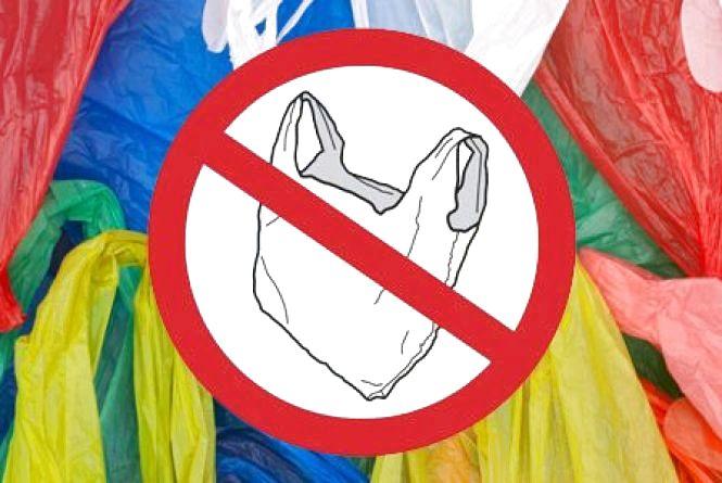 Замість пакетів - еко-торбинки: у Житомирі обмежили використання пластикової упаковки