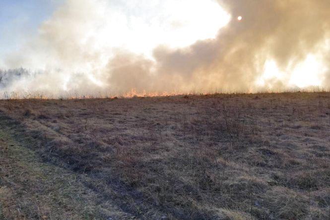В Овруцькому районі -  лісова пожежа