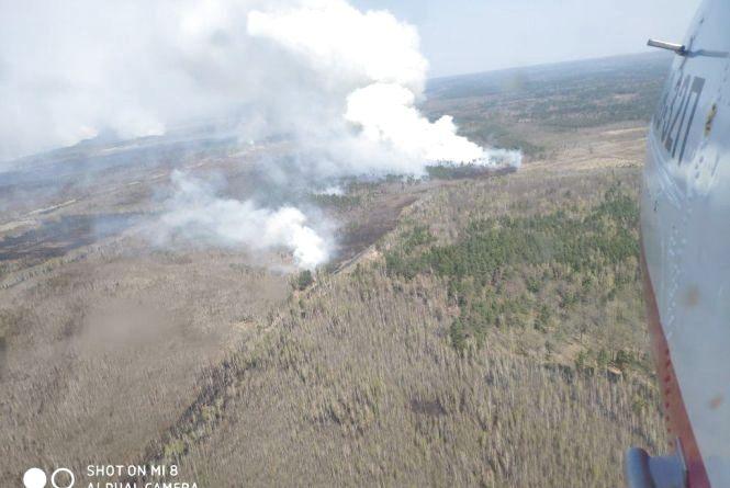 Пожежу на території Виступовицького лісництва Овруцького району локалізовано