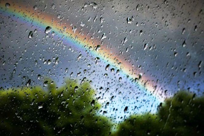 Погода: дощі з дощами, місцями невеликий дощ