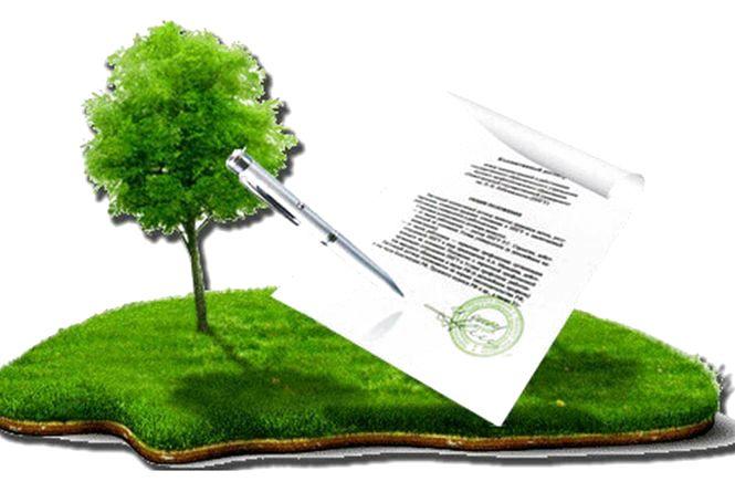 У Хорошівському районі недобросовісного орендаря зобов'язано повернути земельну ділянку для видобування габро вартістю понад 3 млн грн