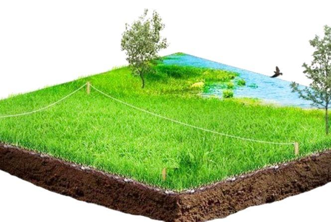 На Житомирщині 53% витягів з технічної документації про нормативну грошову оцінку земельної ділянки замовлено онлайн