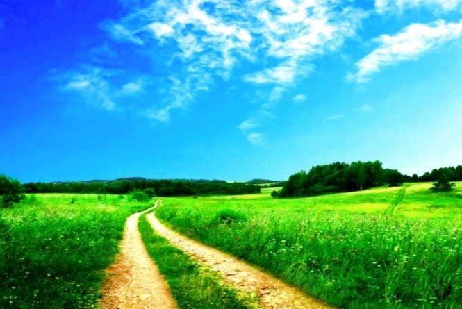 Сюрпризи погоди: яким буде літо в Україні