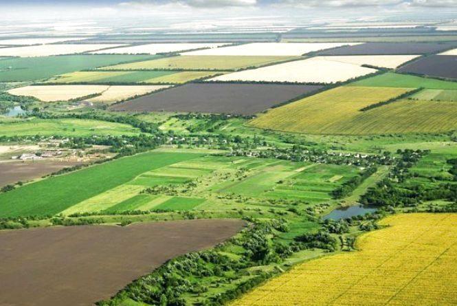 Понад 800 тис. грн надійшло до бюджетів Житомирщини за результатами земельних торгів, проведених цьогоріч
