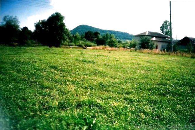 На Житомирщині понад 14 тис. громадян замовили витяг з Державного земельного кадастру в онлайн-режимі