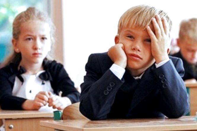 Найдорожче державі обходяться школярі Лугинського району - 105,9 тис. грн на одного учня