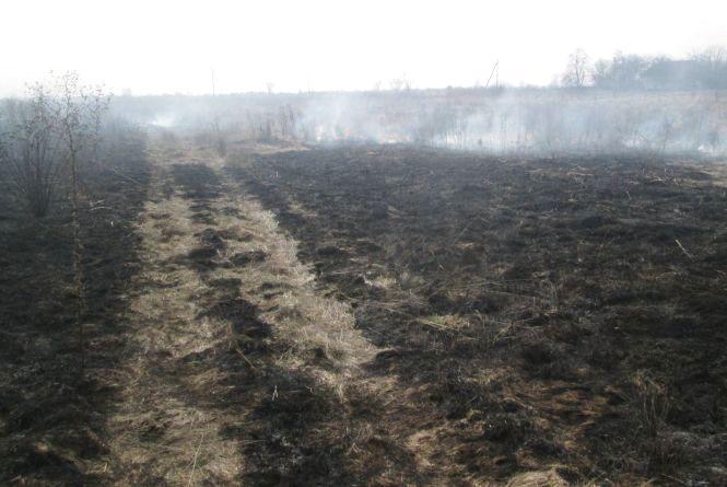 В Овруцькому районі горів гектар сухої трави: ледь не зайнялися житлові будинки