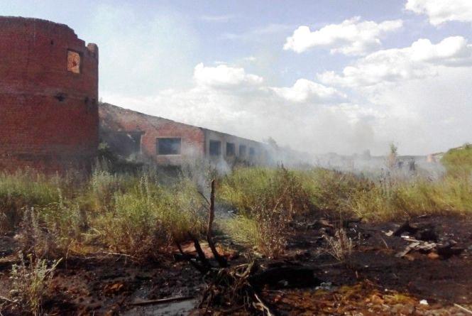 У Народицькому районі горять торфовища