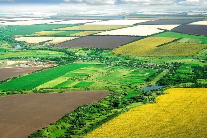 Кадастрові реєстратори Житомирщини з початку року опрацювали понад 100тис. заяв з питань ведення Державного земельного кадастру