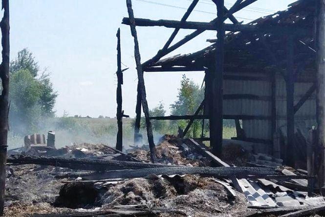 У Черняхівському районі  подвійнний розряд блискавки заледве не спалив сіновал