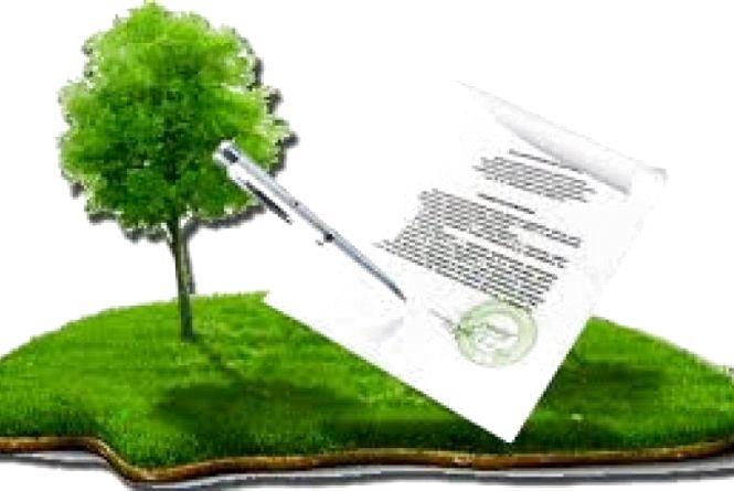 У Житомирській області понад 40 тисяч земельних ділянок зареєстровано в онлайн-режимі