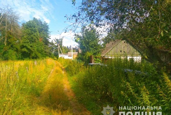 У Житомирському районі викрито чоловіка, який позбавив телефонного зв'язку односельчан