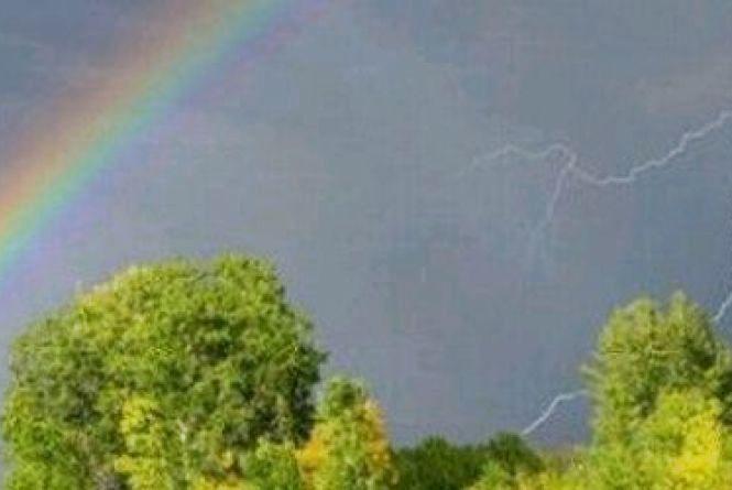Погода у Житомирі 11 липня: очікується дощ з грозою