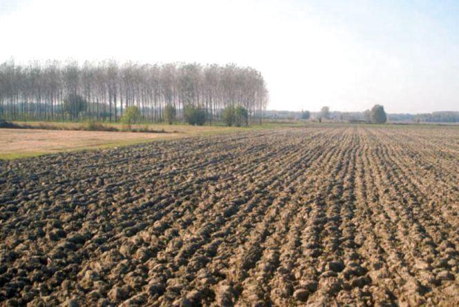 Як працює земельна децентралізація?