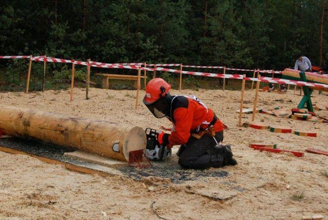 В Дубовецькому лісництві на Житомирщині змагатимуться вальники лісу