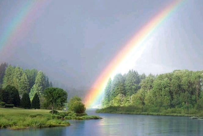 Хмарно, у другій половині дня очікується дощ, - прогноз погоди на 17 липня