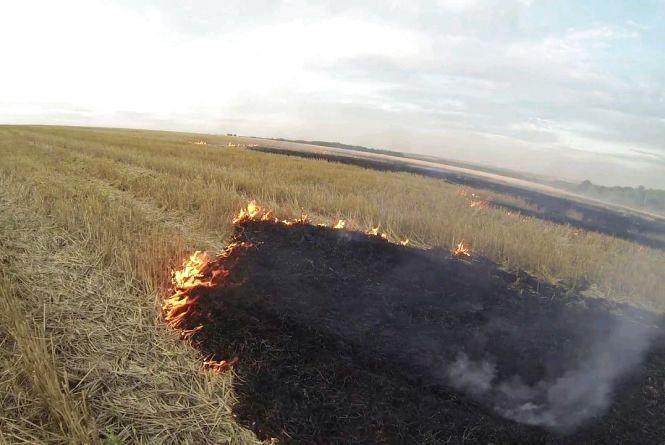 Гектар жита та 1,5 га стерні згоріли на Малинщині