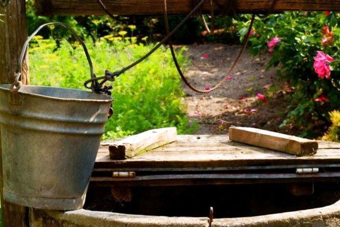 У більшості колодязів Житомира вода не відповідає нормам