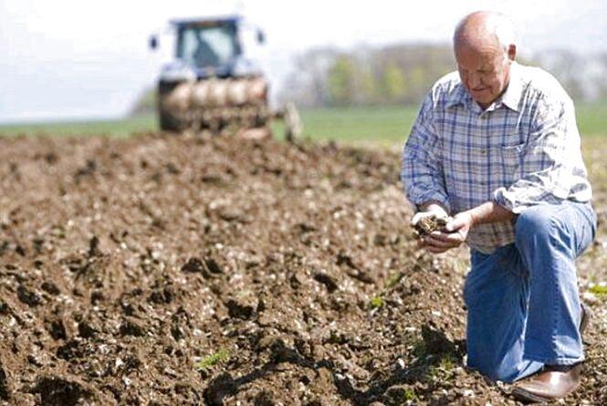 Держпідтримка фермерів у планах та в реальності