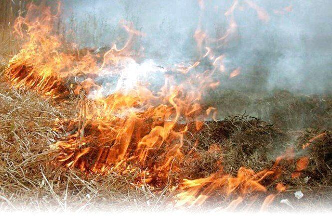 За минулу добу ліквідовано 13 загорянь сухої трави та сміття