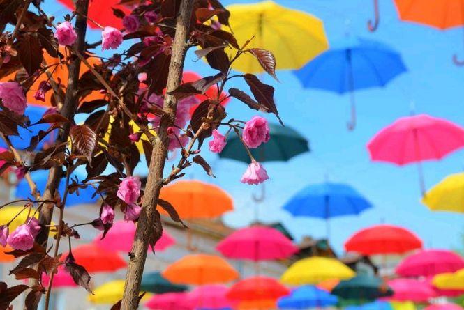 Яскравий вікенд: День міста Житомира, Дерун Fest-2019 та спортивні івенти