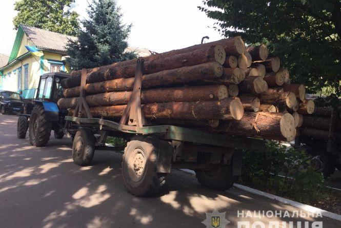 Трактор, завантажений краденою сосною, затримали в Олевському районі