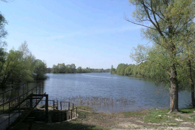 На Житомирщині 13 гідроспоруд рибницьких ставків вартістю майже мільйон гривень повернули після втручання прокуратури