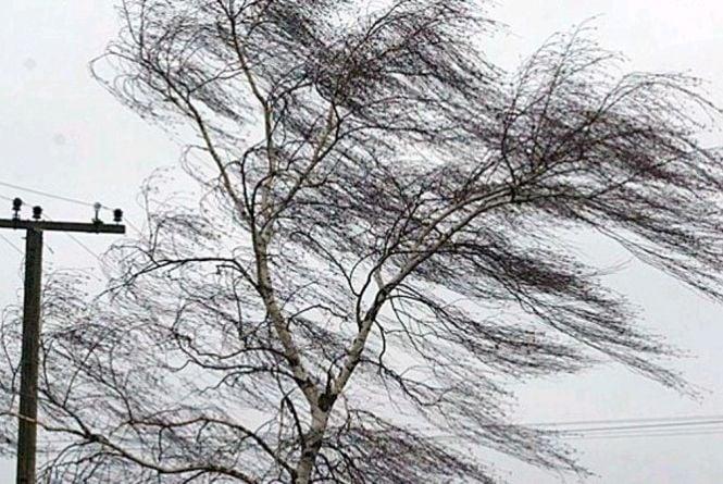 Увага! Попередження про пориви вітру в Україні