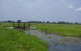 В Овруцькому районі в  меліоративному каналі виявили тіло загиблого чоловіка