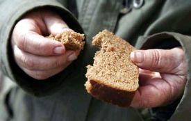 Середня вартість хліба в Україні досягла європейських значень