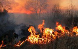 Пенсіонерка отримала  опіки ІІІ та ІV ступенів при спробі самостійно погасити пожежу