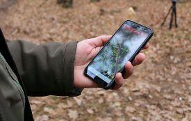 """Житомирщина – серед 6-ти областей, де почала діяти програма """"Ліс у смартфоні"""""""