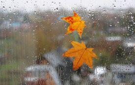 Туман, мряка, холод: осінь нарешті згадала про свій складний характер